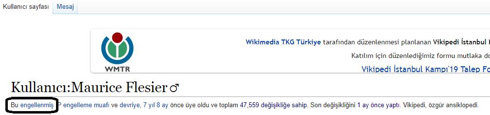 Wikipedia Nedir? Vikipedi Neden Kapanmıştı? Aydınlanacaksın1 6 vikipedi