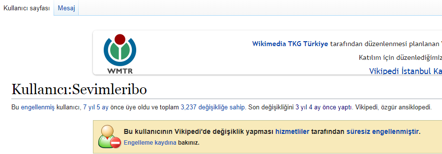 Wikipedia Nedir? Vikipedi Neden Kapanmıştı? Aydınlanacaksın1 3 vikipedi